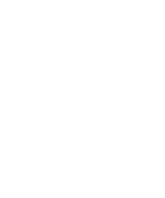 Wake the City